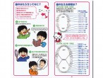 小児歯科予防ガイド