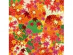 紅葉(秋)
