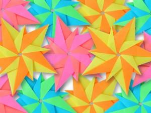 タント蛍光6色のコピー